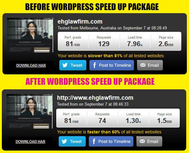 WordPress Speed Up Service