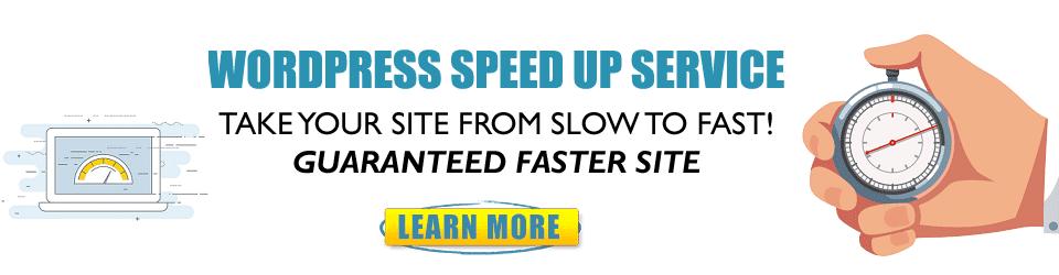 WordPress Speed Service